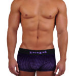 Papi Cool 2 Ombre Purple Trunk