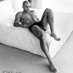 Todd Sanfield's Essential Collection